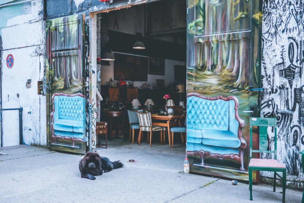 report wollen m bel kaufen. Black Bedroom Furniture Sets. Home Design Ideas